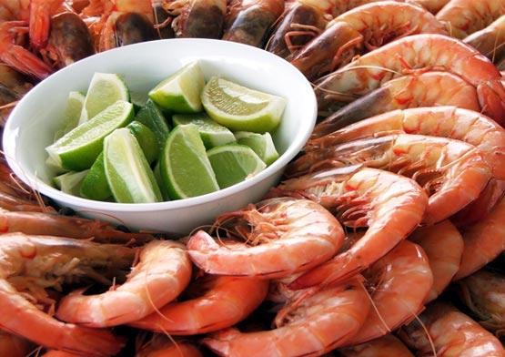 frutos-do-mar