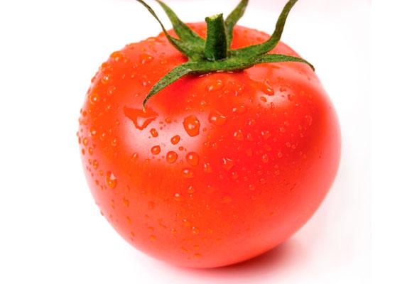 O tomate, fruta rica em licopeno, bastante consumida no Brasil.